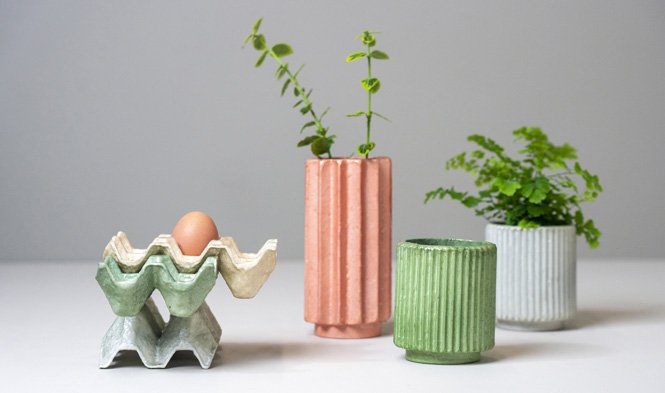 egg trays and flowerpots