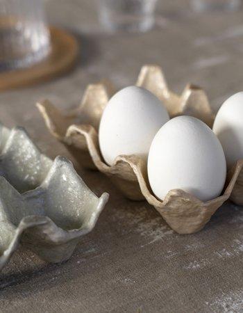 egg trays capiz pulp