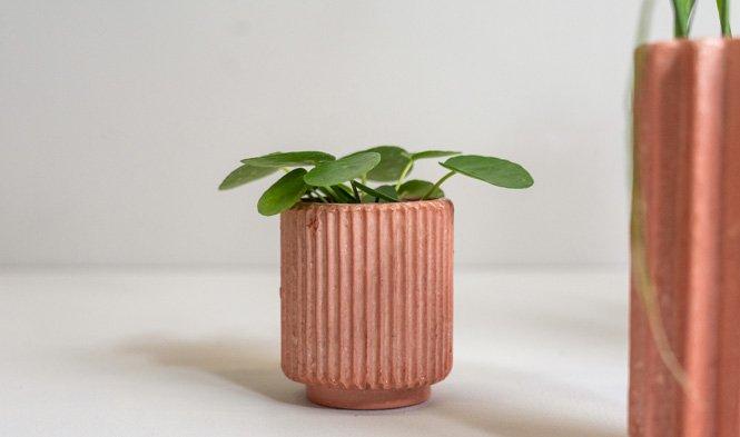 rosy flowerpot small origami
