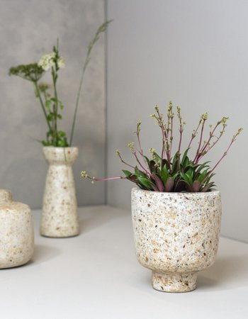 wood pulp vases
